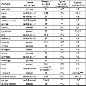 Когда сажать овощи на рассаду - расчет сроков по формуле 24
